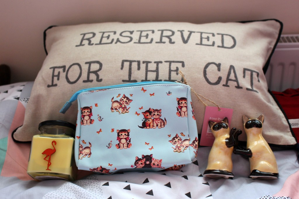Flamingo-Gifts-Candles-Retro-Reserved-For-The-Cat-Cushion