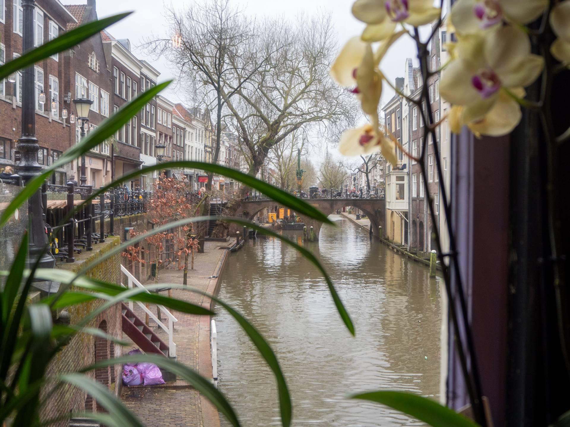 Café Heen en Weer - day trip to Utrecht from Amsterdam